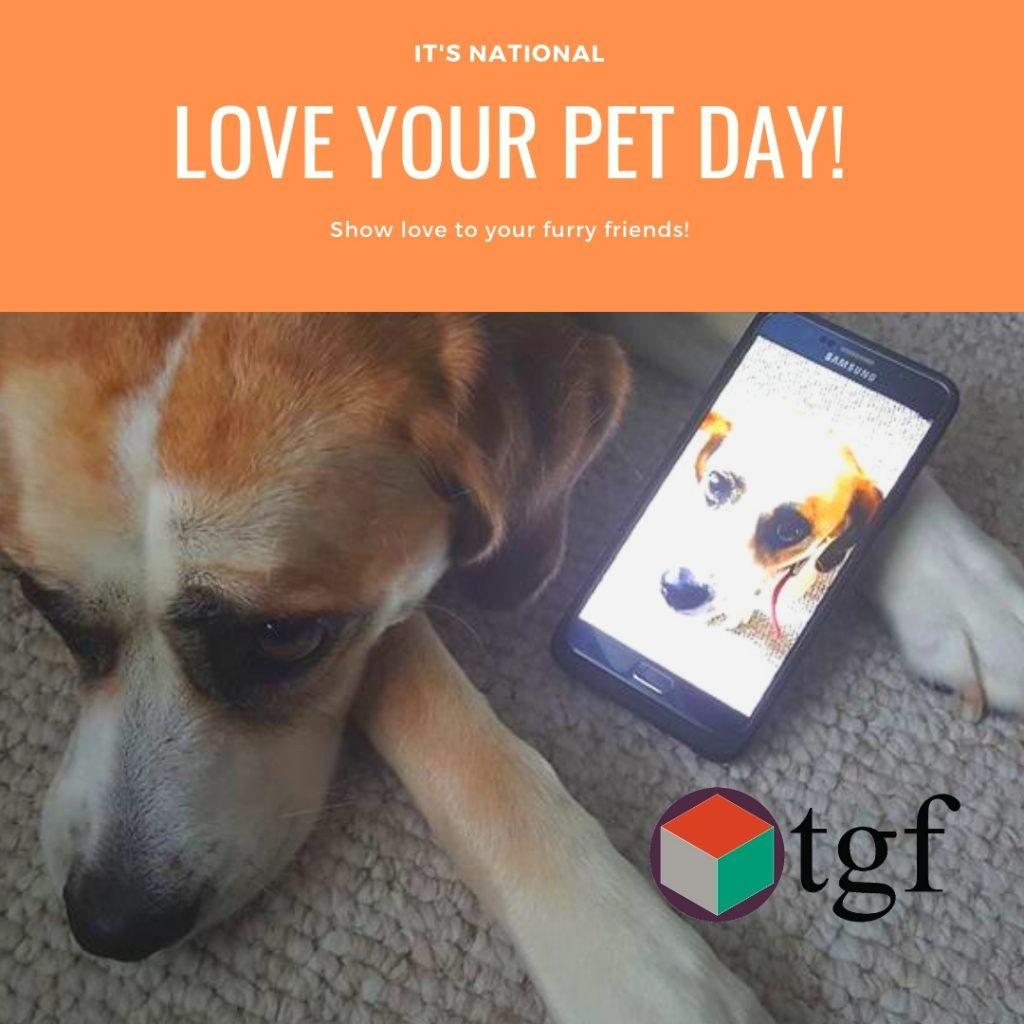 TGF Consulting, Inc. - Instagram Ad